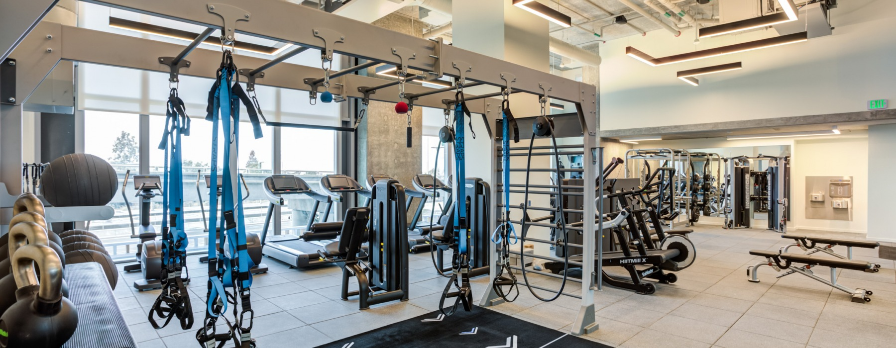 Gym Full of cardio equipment, jungle gym exercise station and free weights